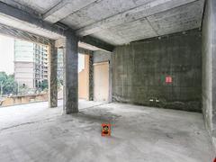 万科清林径 9室2厅252.03m²毛坯二手房效果图