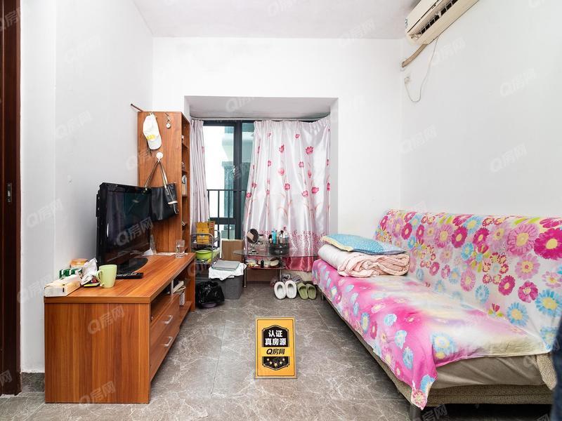 桐林城市广场 1室1厅1厨1卫 31.87m² 精致装修
