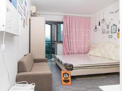 美园 1室0厅28.48m²精装修二手房效果图