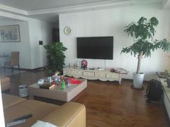 兰溪谷二期 4室2厅191.07m²整租租房效果图